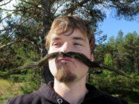 Daniel Notvik : biORAKEL